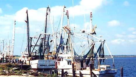 Порт Апалачиколы
